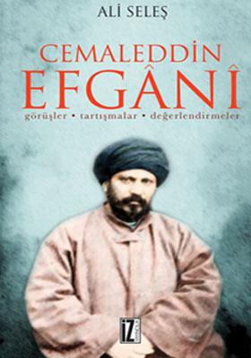 Cemaleddin Efgani / Görüşler - Tartışmalar - Değerlendirmeler