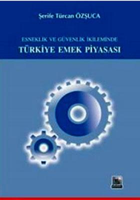 Türkiye Emek Piyasası