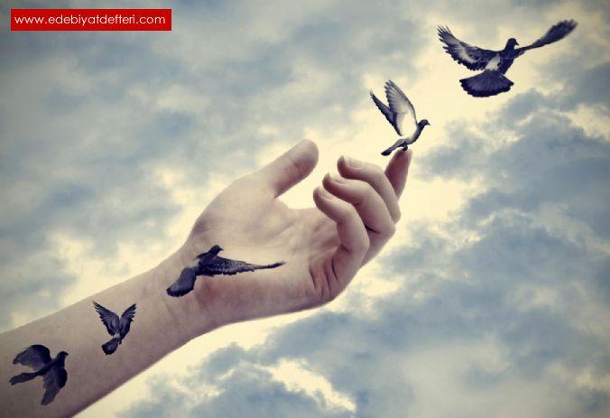 Uçmayı Unutan Kuşlar