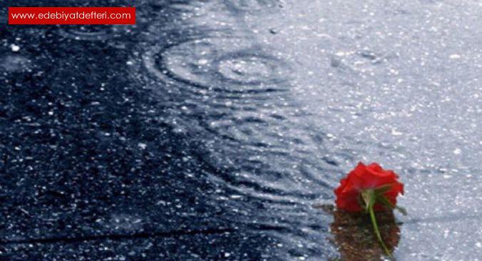 Yağmurdan sonra sevdim seni