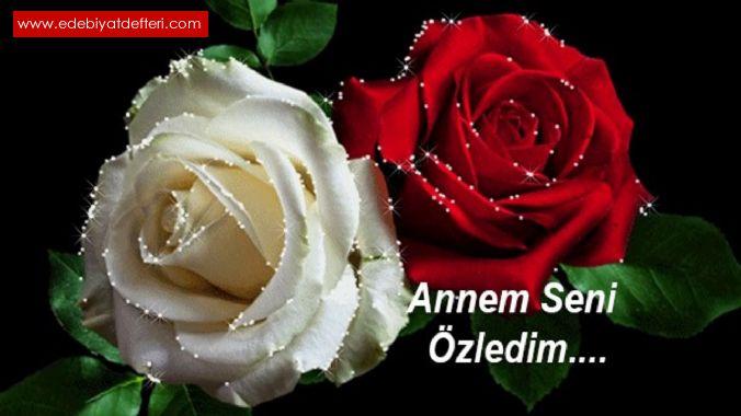 CANIM  ANAM