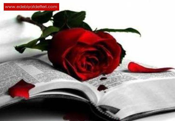 Aşk hırkası