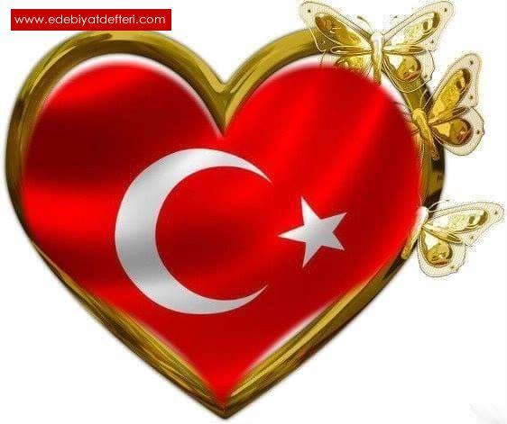 GARİP BİR TÜRK'ÜM...