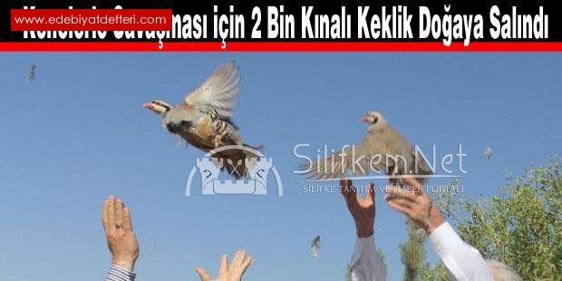 Kainatdaki,dengeye   Sünnetullah  denir.Allah   kanunlarını korumayı  emreder.