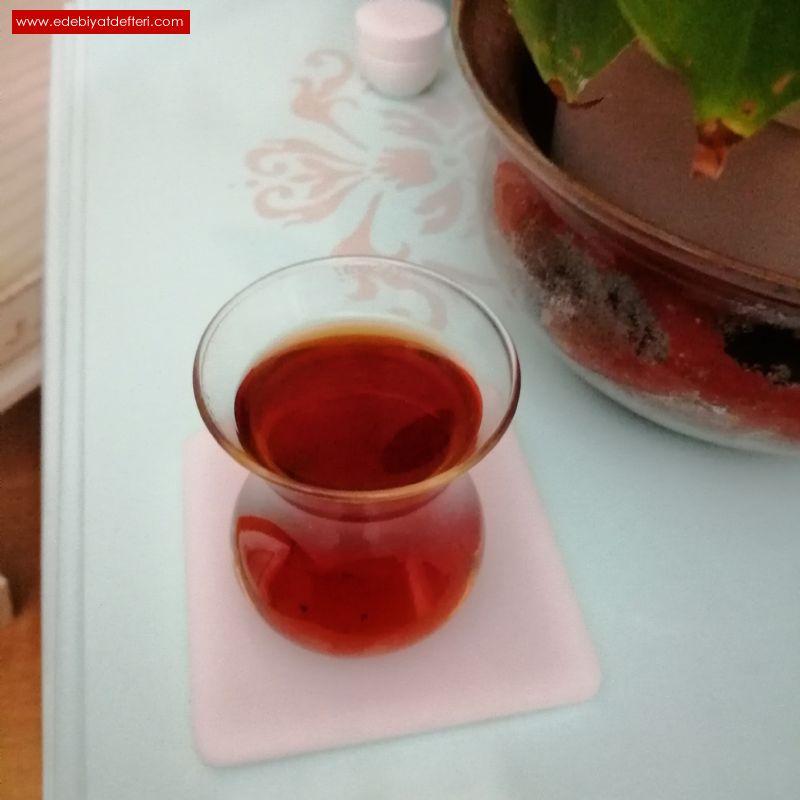 Yirmi Üç Çayı
