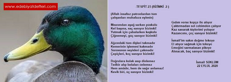 TESPİT-23-(BİZİMKİ-2-)