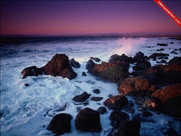 Karadenizin  çağrısı