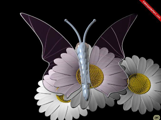 Çiçekler ve Kelebekler