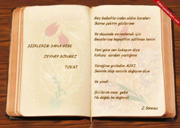 ŞİİRLERİM SANA GEBE