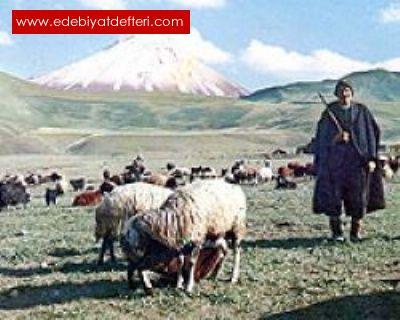 Garip Çoban