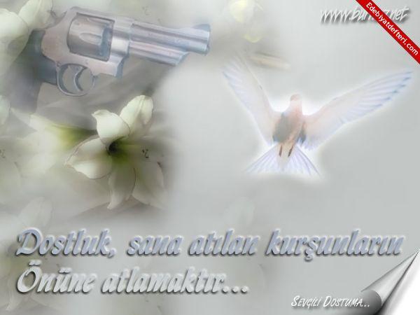ARKADAŞ SEÇİMİ