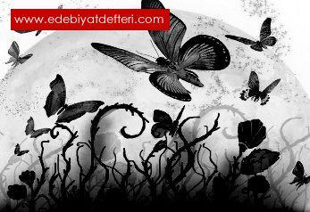 Kelebeğin Düğünü