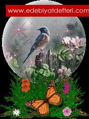 Bülbülün Aşkı (masal)