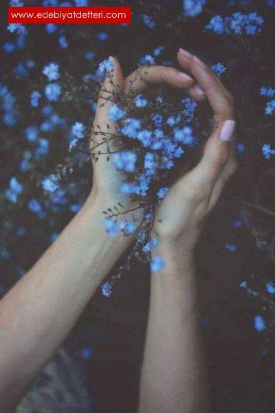 küçük mavi çiçek