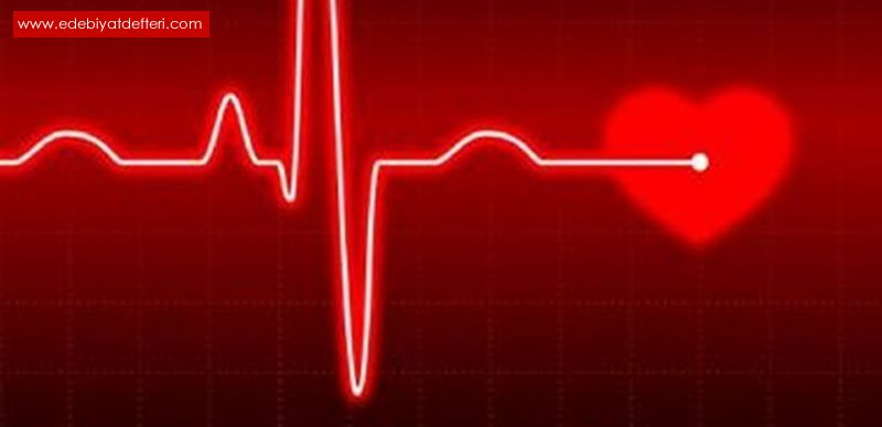 Kalbinizi Her Gördüğünüzle Doldurmayın