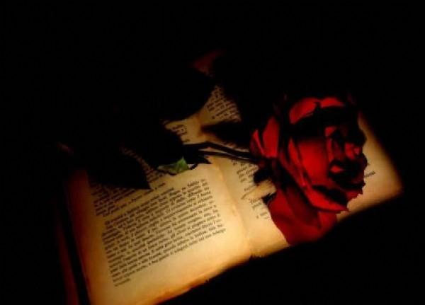 Kitap ve Hikmet