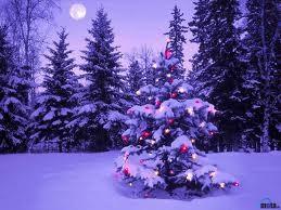 Hoş Geldin Yeni Yıl 2012