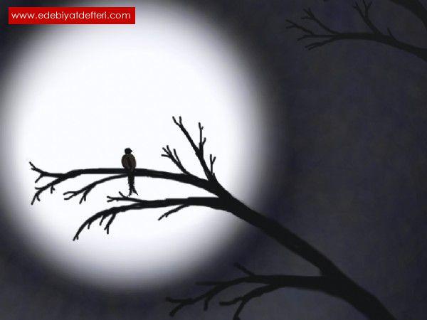 Yalnızlığın Kanat Sesleri 9