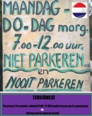 Hollandalılar Süper Akıllı