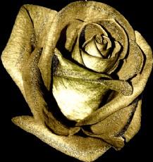 Güller Kıskanır Gülüşlerini