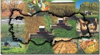 Tarım ve Hayvancılığa Yeniden Dönmeliyiz!