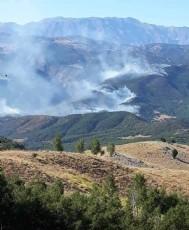 Munzur'da yangın doğa ve yaşamı yok ediyor