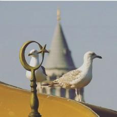 GALATA KULESİ III.