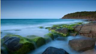 Mezarımız Denizlerdir