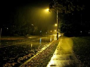 Yağmur Gecenin Umudu