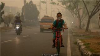 İklim Değişikliği Ve Kuraklık