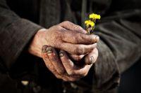 Sahra Gülleri Babamdan Hangi Gazeli İster?