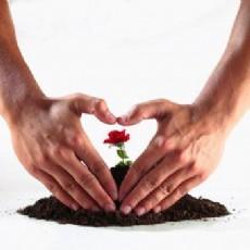 Sevgi,  Su ve Toprak