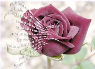 Kuran-ı Kerim'i Sevmek